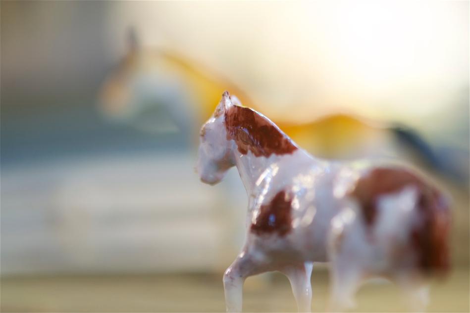prettyhorses