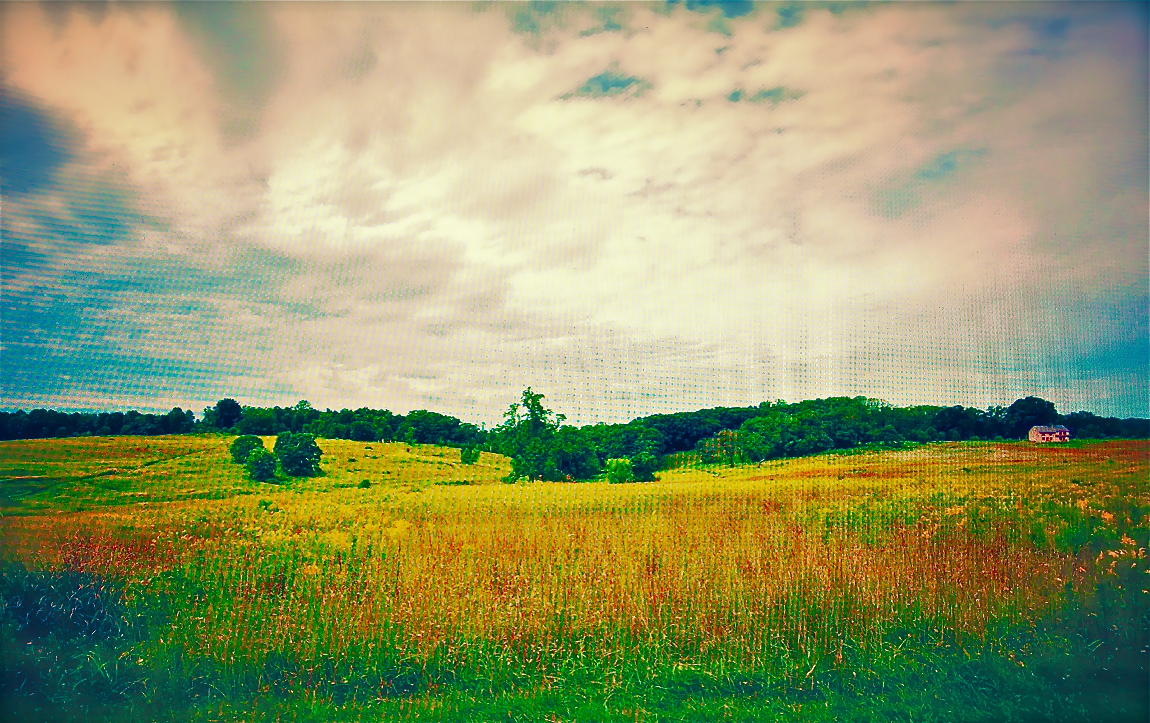 Longwood gardens pops mojo photos meadow workwithnaturefo