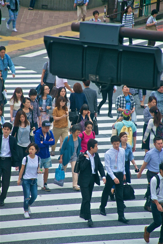 Shibuya Crossing 34